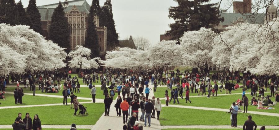 Университеты сша с финансированием