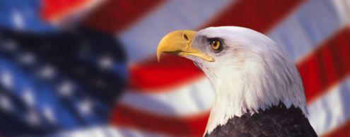История герба США
