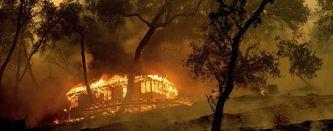 Пожары в Калифорнии. 2020 – это не только коронавирус
